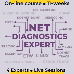 .NET diagnostic expert